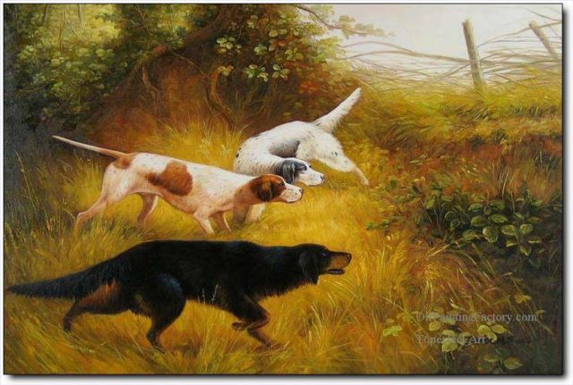 Охотничьи собаки