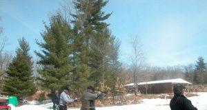 Стрельба по мишеням зимой