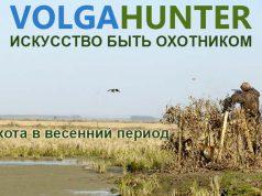 Охота весной
