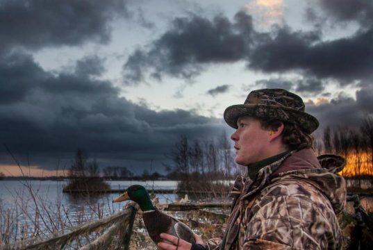 Охота на утку с подсадной весной