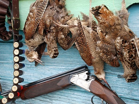 весенняя охота