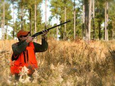 Салон оружия форум охотников