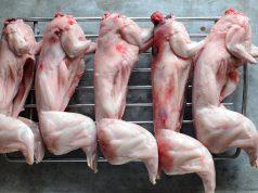 готовим зайца