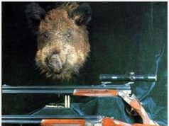 карабин для охоты на кабана