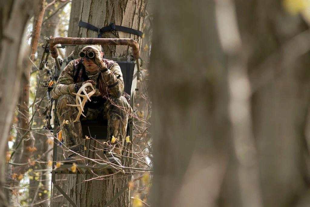 для охотники в засаде картинки чего выложил